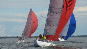 Tre segelbåtar i medvind.