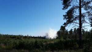 Rök från en brand på Söderfjärdsvägen i Malax.