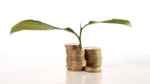 Pengar som växer