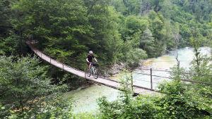 Man cyklar över hängbro över floden Soča i Slovenien.