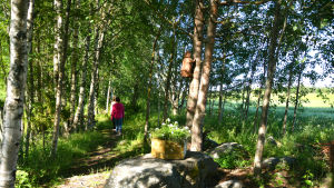Två kvinnor går längs en naturstig.