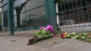 Blommor ligger på marken utanför en byggnad som är inhägnad av ett stålstaket.