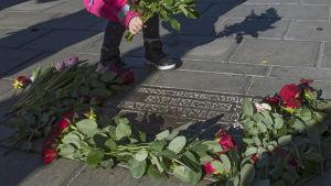 Ett barn lägger ner rosor vid Olof Palmes mordplats.