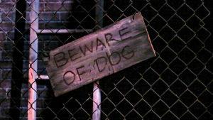 """Varningsskylt med texten """"varning för hunden"""" på engelska"""