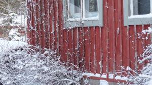 En del av ett rödmålat trähus. Husknuten. Vinter och snö