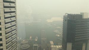 Tjock rök från skogsbränderna hänger över miljonstaden Sydney