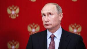 Närbild av Rysslands president Vladimir Putin.