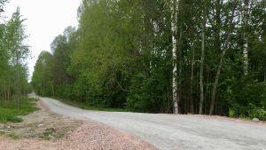 En del av friluftsleden Banvallen i Billnäs.