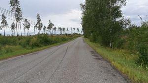 En öde väg. På sidorna av vägen syns träd och buskar.