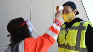 En Röda Korset-arbetare mäter feber på en ordningsvakt före matchen mellan Hoffenheim och Hertha.