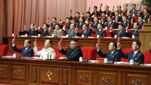Det nordkoreanska arbetarpartiets åttonde partikongress beslöt att hädanefter hålla partikongresser vart femte år.