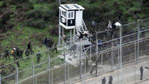 I början av december lyckades ungefär 400 migranter ta sig över till Ceuta.