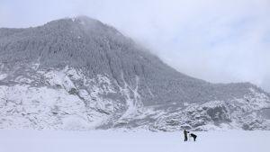 Operaatio Alaskan työryhmää Alaskassa kuvausmatkalla talvisessa maisemassa.