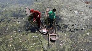 Flod i Indien