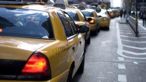 Lång rad av gula taxin i New York