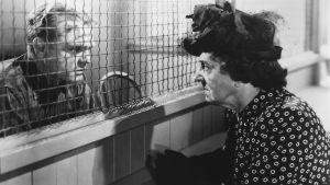 James Cagney ja Margaret Wycherly keskustelevat vankilassa turvaverkon läpi elokuvassa Valkoinen hehku 1949