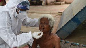 En indier testas för coronaviruset.