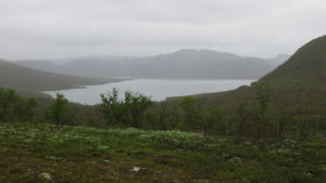 tunturimaisemaa ja järvi, alkukesällä