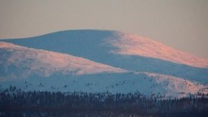 Tunturimaisemaa Pallas-Ylläksen kansallispuistossa