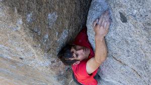 Klättraren Alex Honnold klamrar sig fast vid bergväggen.