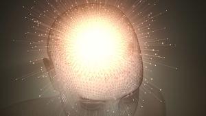 Konstnärens vision av kopplingarna i en hjärna.