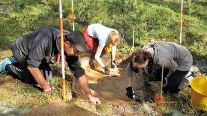 Tre person gräver i terrängen i en skog.