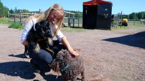 En ung kvinna sitter med en hundvalp i famnen. Framför henne står en liten hund som hon krafsar. I bagrunden syns inhägnader för hästar.