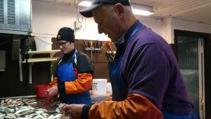 Börje Holmberg och hans dotter rensar strömming.