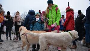 Två golden retriever-hundar tillsammans med sin matte och familjens två barn iklädda varma kläder utanför Mikealskyrkan.