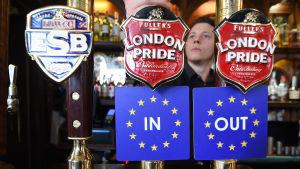 Ölkranar på Londonpub med brexitalternativen i folkomröstningen 2016.