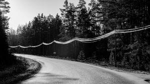 Landsväg som svänger till vänster, en svartvit bild.