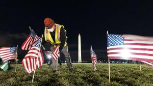 En man placerar ut små amerikanska flaggor på en gräsmatta.