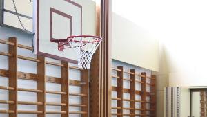 Bild på en tom gymnastiksal med ribbstolar och basketkorg