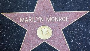 Marilyn Monroes stjärna på trottoaren