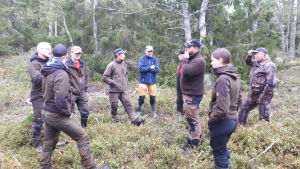 Riistakeskuksen väki saaristossa tutkimassa lampaiden tilannetta.