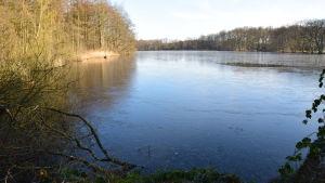 Vattenövningsområdet Lohmühlenteich