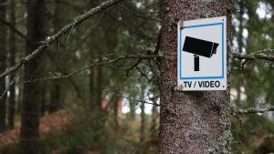 En skylt om kameraövervakning är fastskruvad på ett träd.