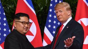 Donald Trump och Kim Jong-Un under toppmötet i Singapore 2018