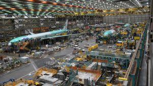 Flera flygplan byggs inne i boeings väldiga fabrikshall i Seattle