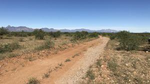 Ökenlandskap vid gränsen mellan Mexiko och USA.