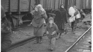 Ingermanlänningar i Hangö i november 1943.