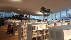 Bokhyllor i centrumbiblioteket Ode