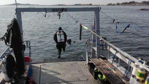 Dykare hoppar i havet från båt