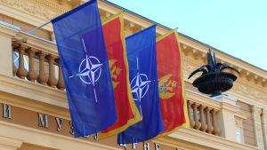 Montenegro är nära att bli Natos 29 medlemsland inför militärpaktens toppmöte i Maj. Natos och Montenegros flaggor vajar utanför regeringshögkvarteret i huvudstaden Podgorica