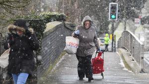 En kvinna vandrar genom snövädret i södra London.