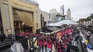 Journalisterna intar sina platser utanför Dolby Theatre inför Oscarsgalan 2014