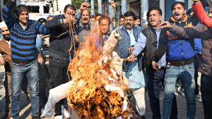 Intialaiset ovat osoittaneet mieltään eri puolilla maata joukkoraiskauksen tultua julki marraskuun lopulla 2019. Kuvassa mielenosoitus Intian Amritsarissa 5. joulukuuta 2019.