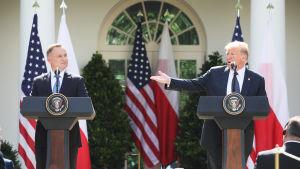 Polens president Andrzej Duda fick en hel del beröm av president Trump under presskonferensen i Vita husets rosenträdgård.