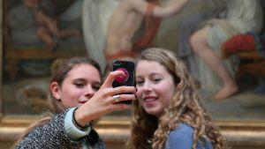Selfietagning på Palais de Beaux-Arts de Lille.