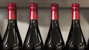 Mietoja 5,5 prosenttisia viinejä.